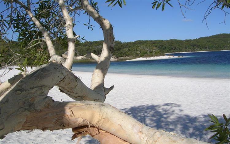 Work and Travelling Queensland